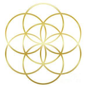 Healing Tayshara Transmissions